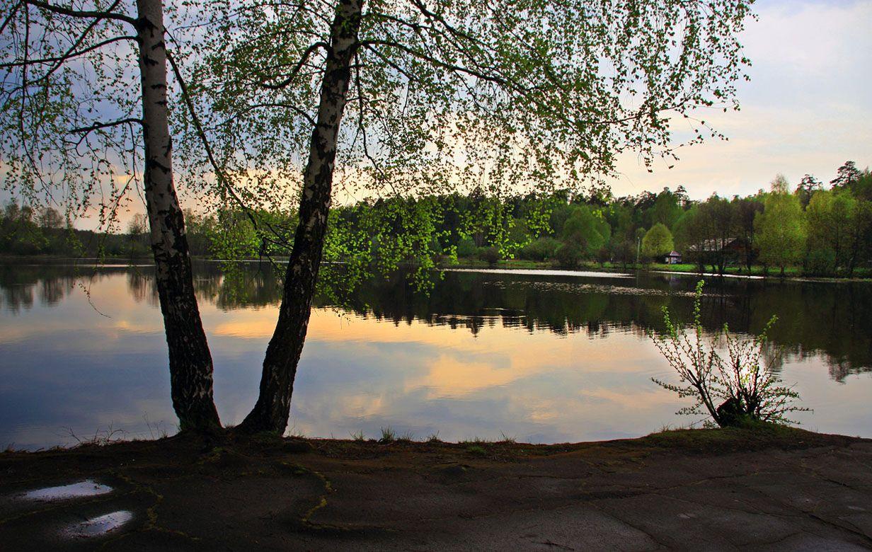 берег, вода, вечер, Тарасов Алексей
