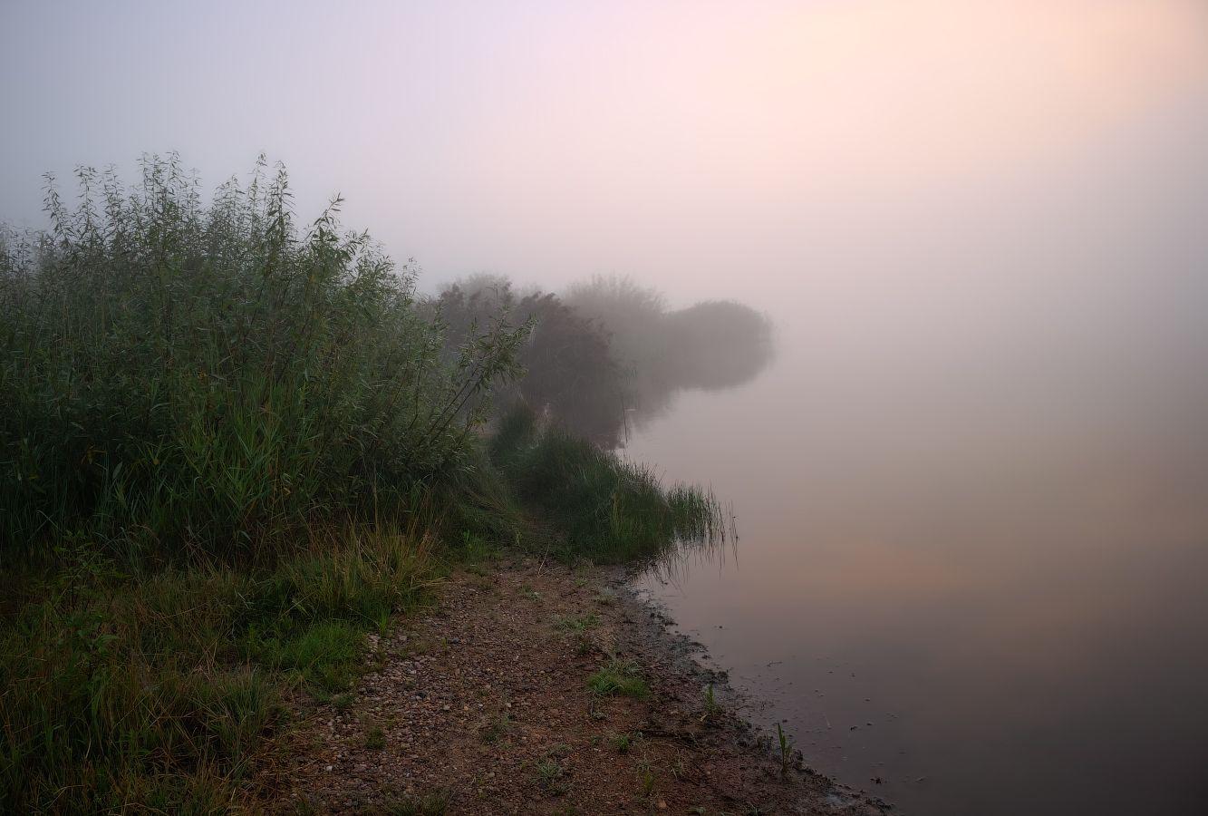 лето, рассвет, туман, река,, Сергей Шабуневич