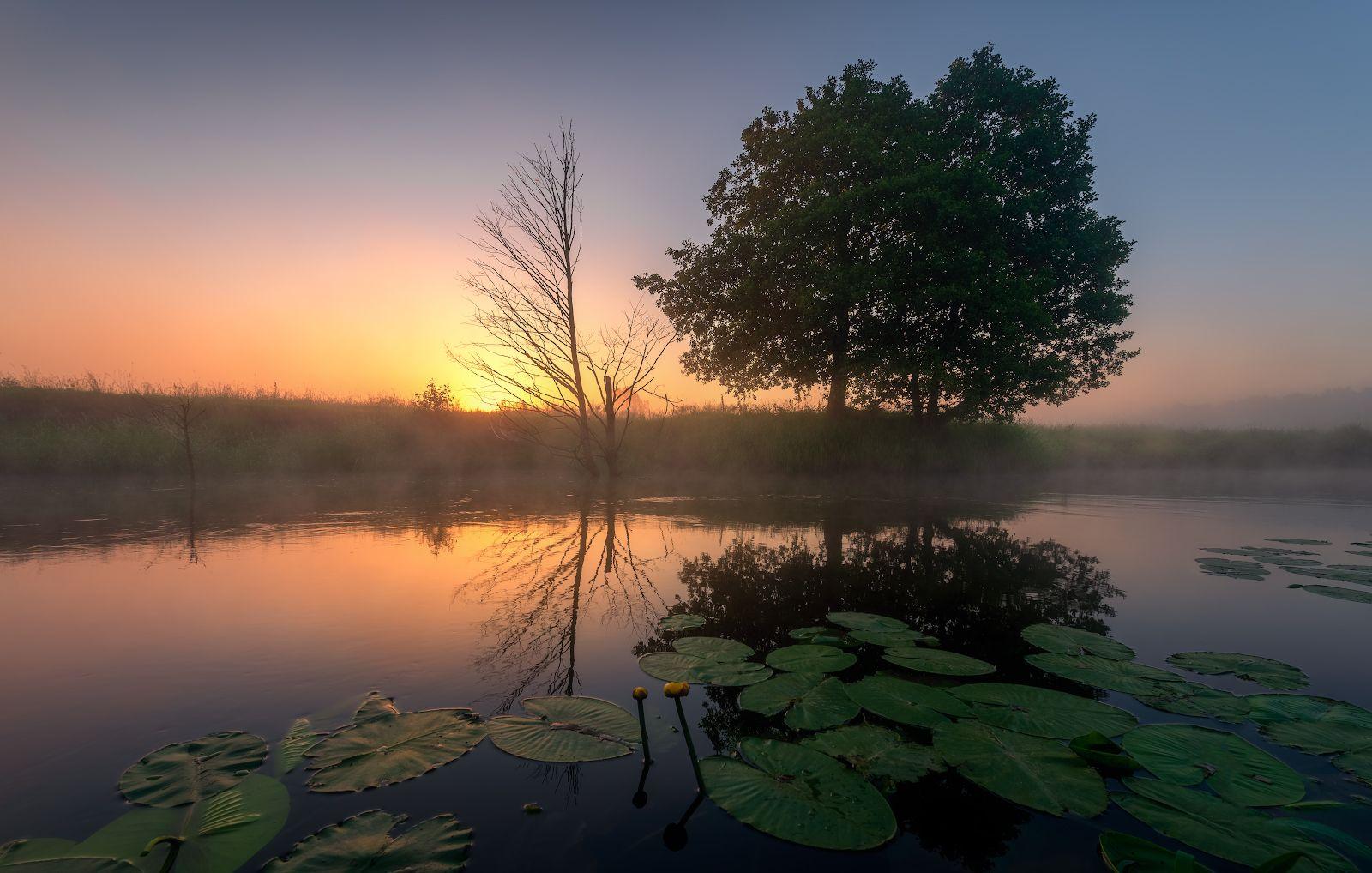 утро, река, рассвет, туман, Левыкин Виталий