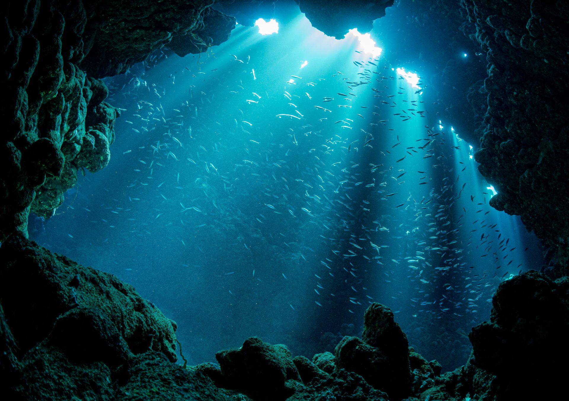 underwater, cavern, cave, diving, underwater photography, landscape, mystic, water, fish, rock, Kulagina Nadya