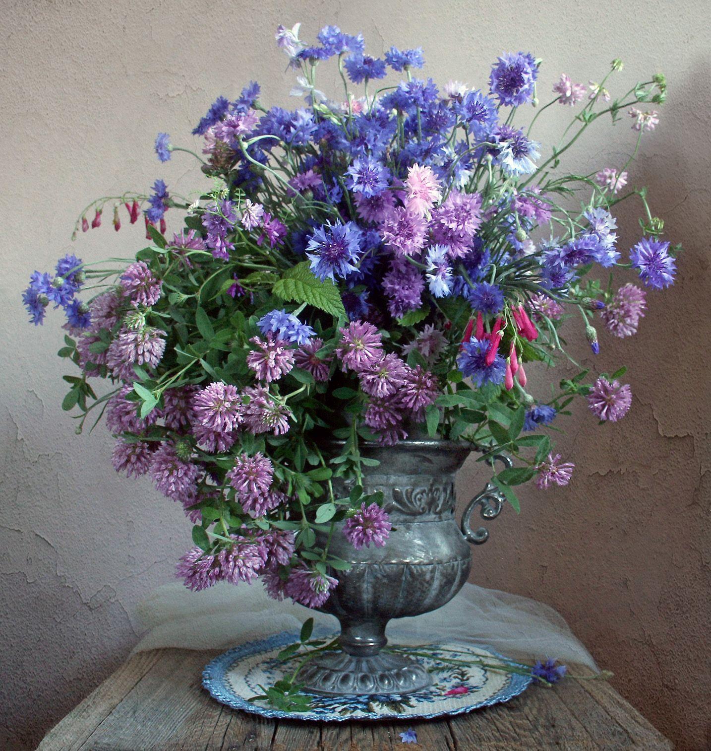 лето,  цветы, натюрморт, марина филатова, васильки, клеве, луговые цветы, Филатова Марина