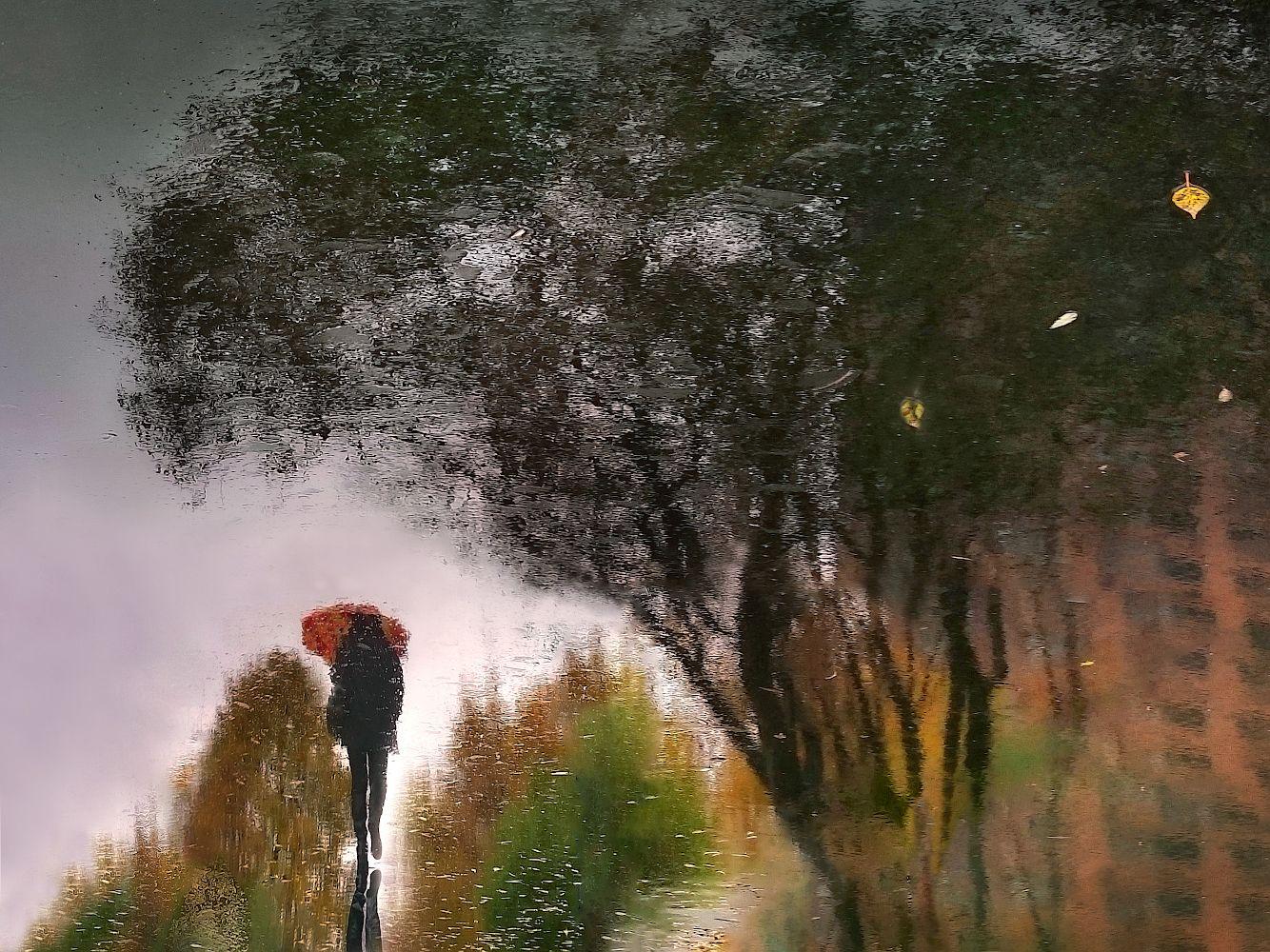 отражение, мокрый асфальт, Заколдаева Ирина