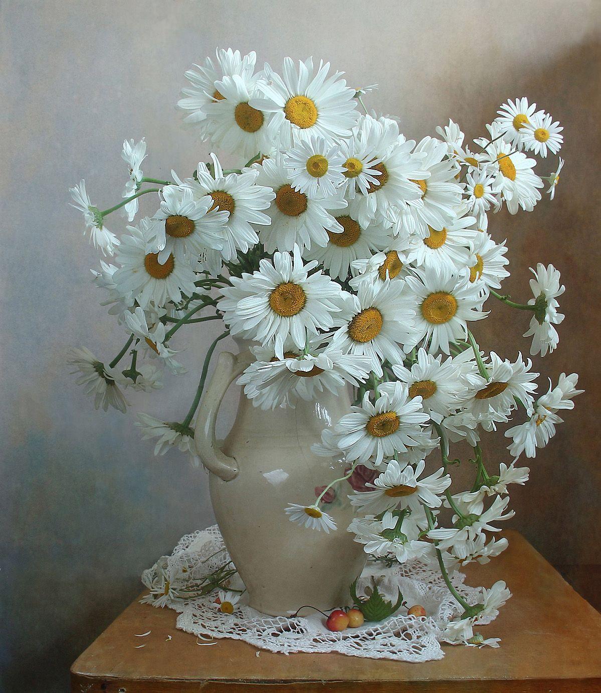 лето,  цветы, ромашки, натюрморт, марина филатова, Филатова Марина