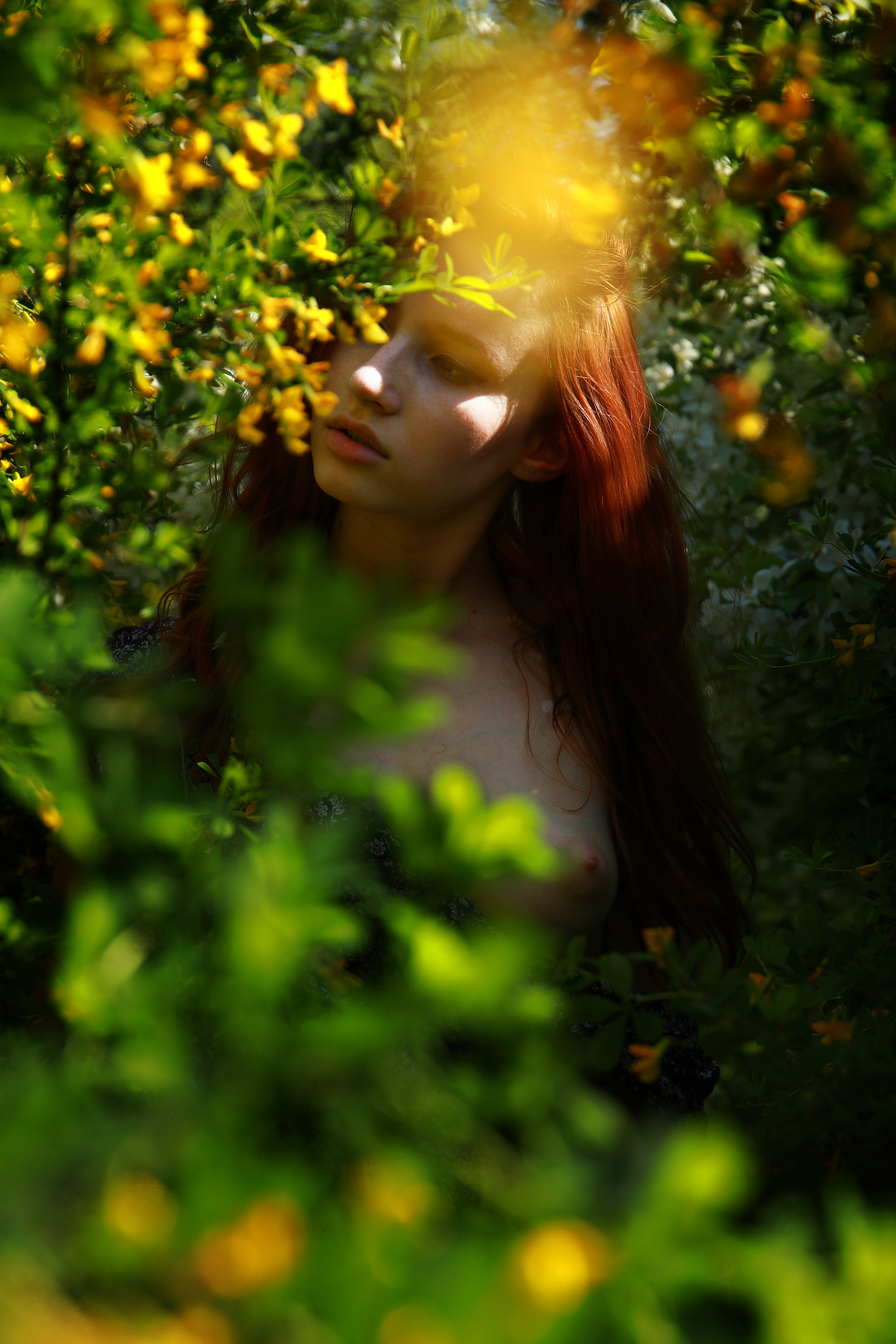 фотограф,павелтроицкий,ню,эротика,nude,artnu,nu,фотосессия,натура,лето,цветы, Троицкий Павел