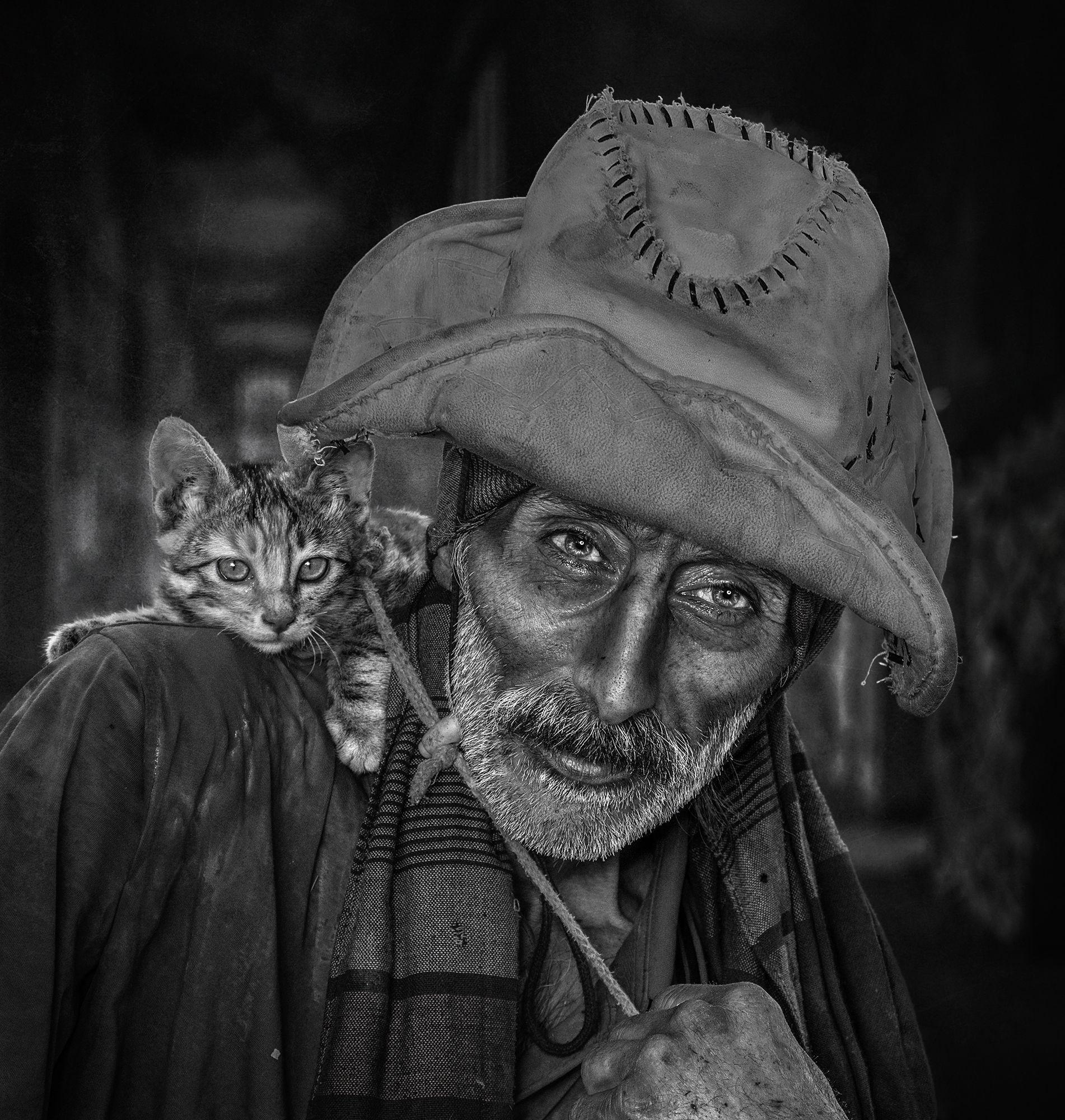 #portrait, #people, #pet, #cat, Zavvar Mehdi