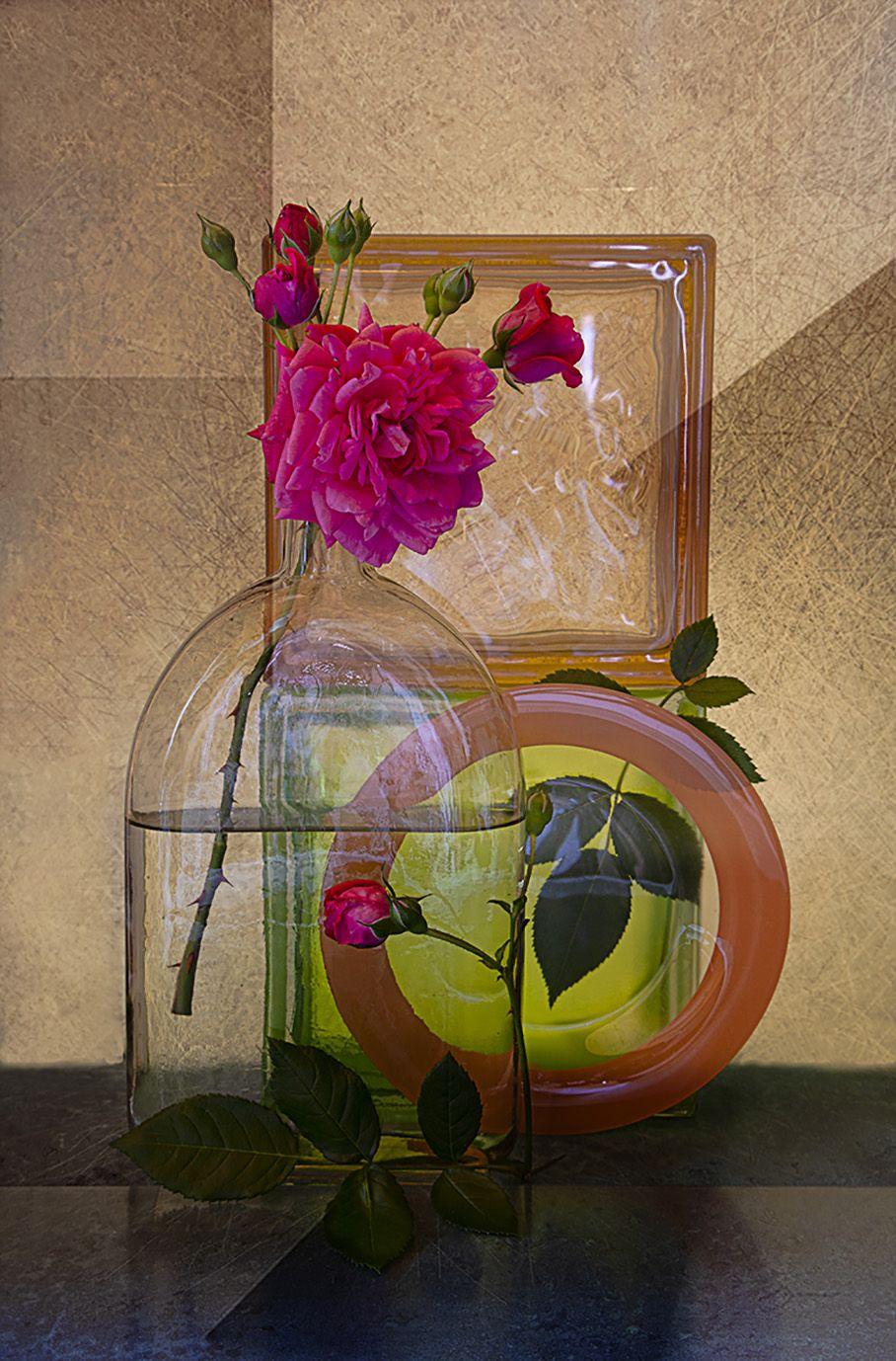 роза, Наталья Ковылина