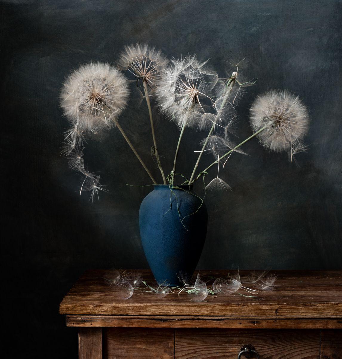 натюрморт, цветы, одуванчики, Оля
