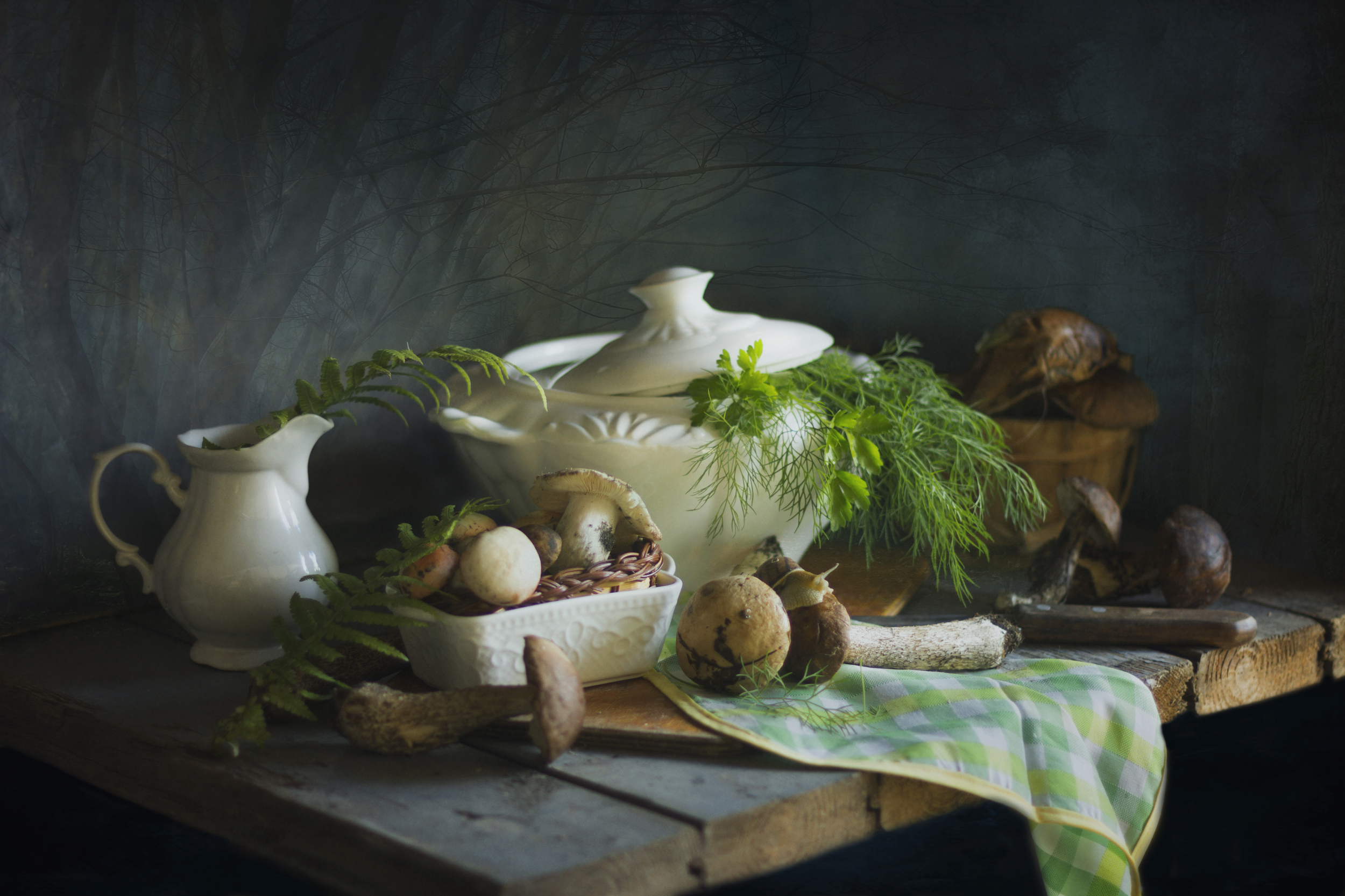 грибы, лес, натюрморт, супница, Зимина Лионелла