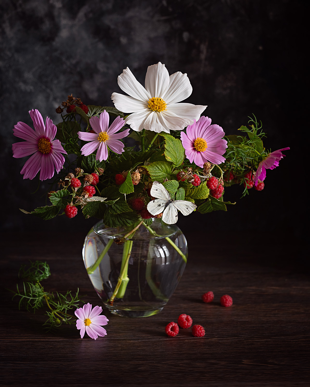 космея малина цветы букет натюрморт фотонатюрморт, Кабачек Наталья