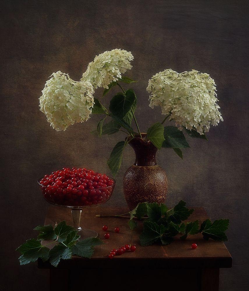 натюрморт,цветы,ягоды,гортензия,порички,смородина, Наталия К