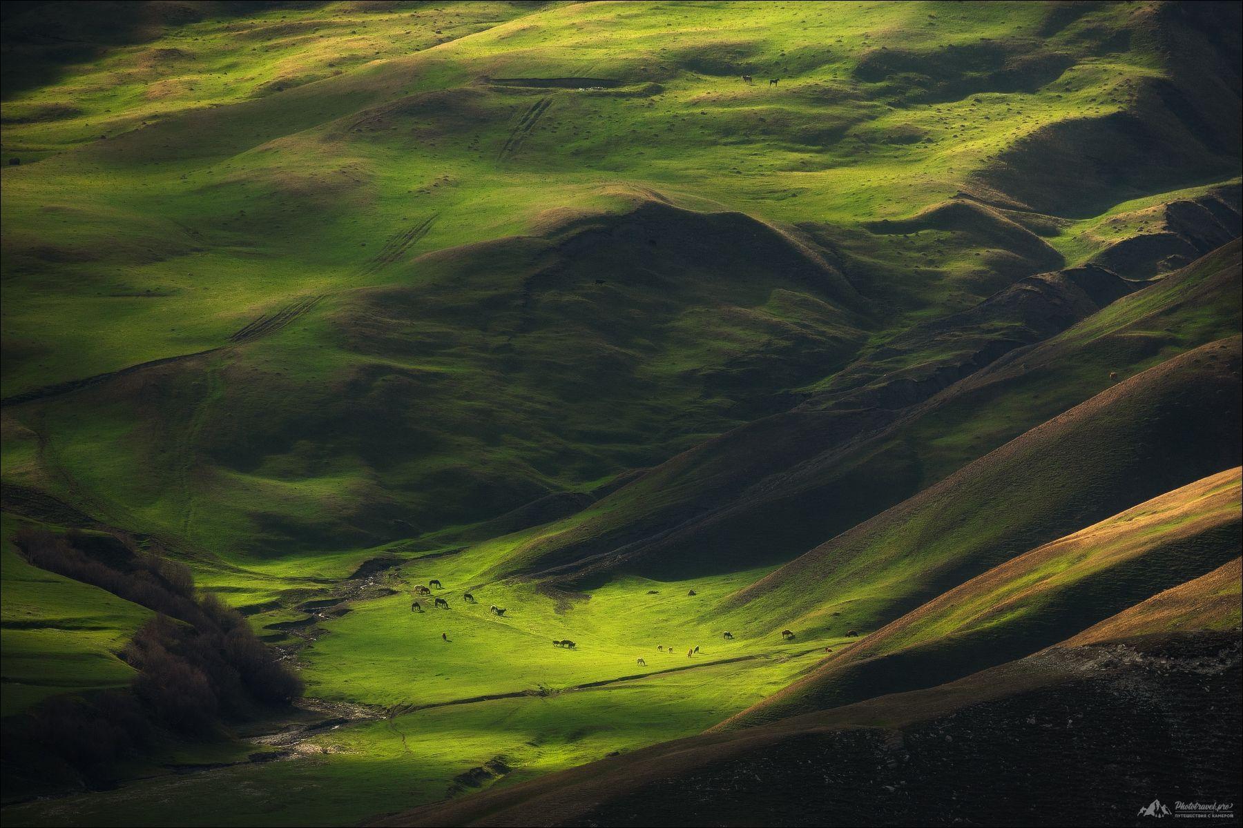 северный кавказ, чечня, дагестан, весна, Влад Соколовский