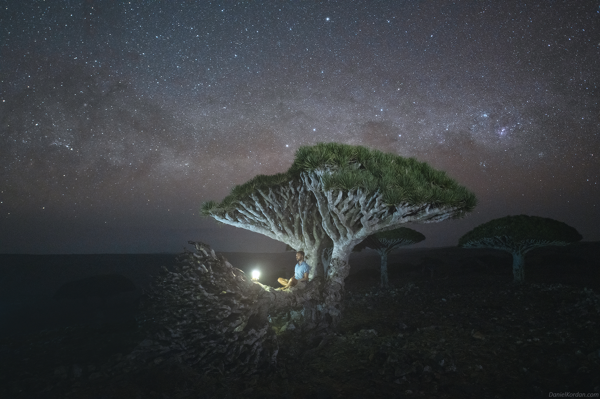 Socotra, Даниил Коржонов