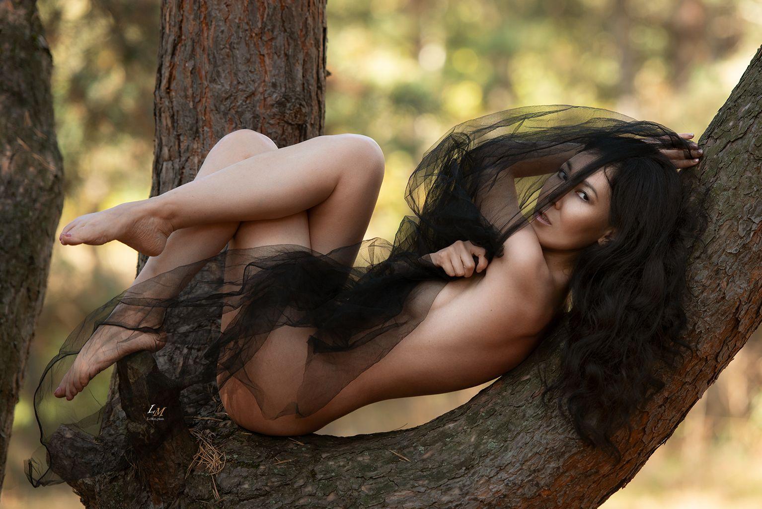 ню, природа, дерево, девушка, арт, лето, nude, sexy, Маркачев Леонид