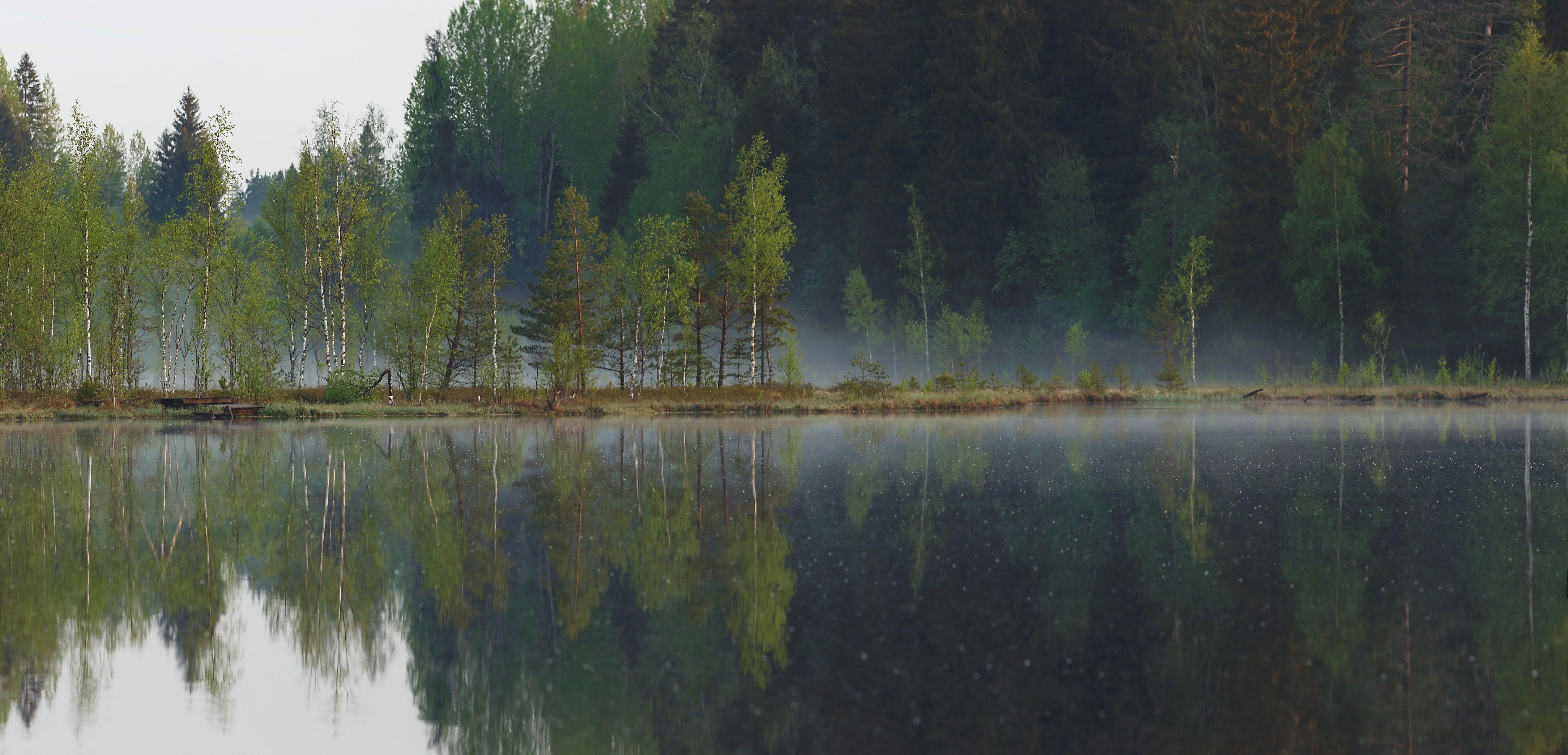 рассвет, туман, болото, озеро, SHE (Aiya) Таня