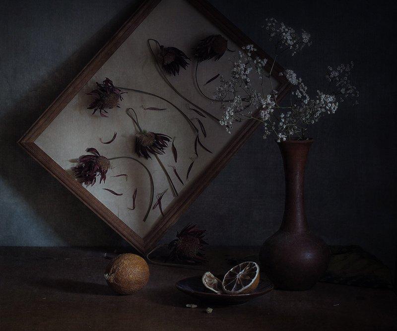 Лимон иссохший, Натюрморт, Сухие цветы, LudmilaNG