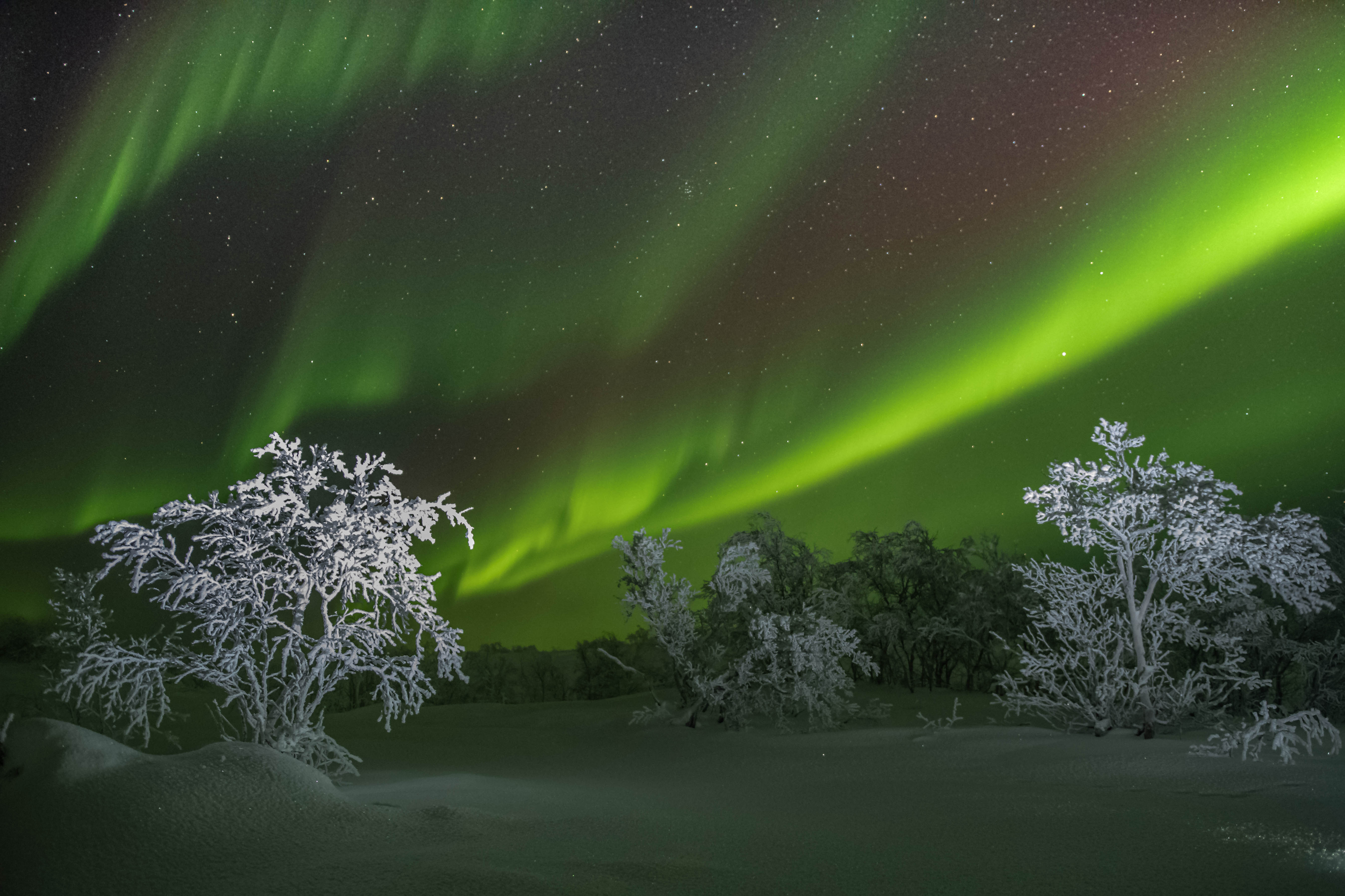 Ночь, Северное сияние, Кольский полуостров, полярная ночь, Kaverin Sergey
