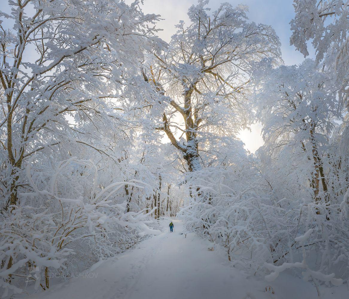 зима, снег, лес, ставропольский край, ставрополье, бештаугорский, бештау, дорога, турист, путешественник, снежное, снежный лес,, Лашков Фёдор