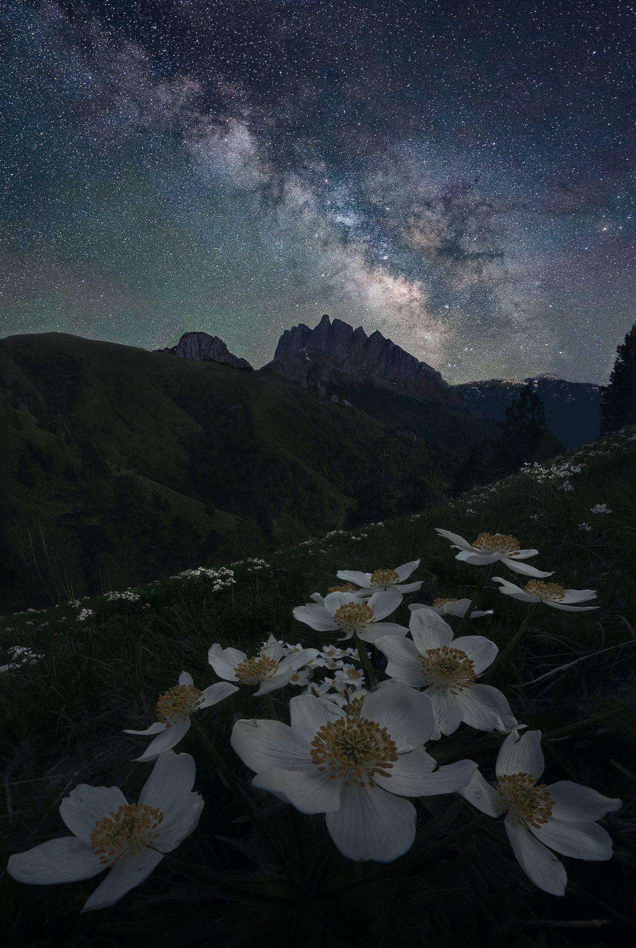 горы, ночь, пейзаж, кавказ, ачешбоки, млечный путь, Дударев Александр