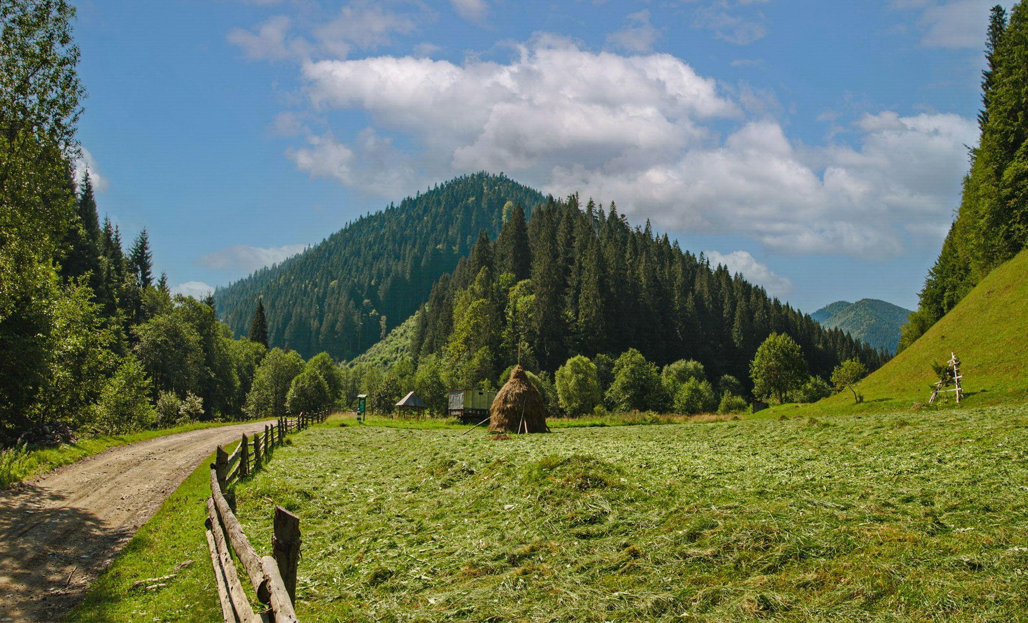карпаты, мармаросы, гуцульские альпы, лето, вершина петрос мармаросский, вид от села богдан, Валерий Наумов