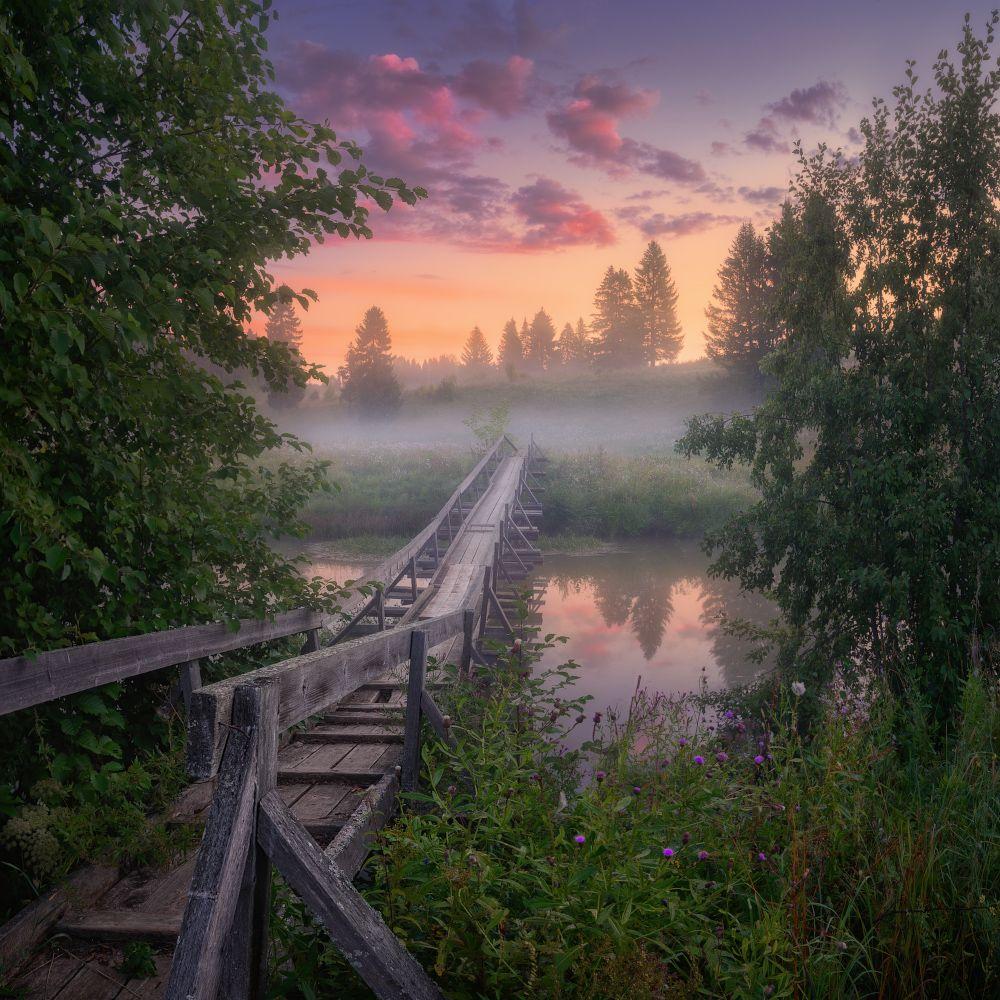 туман, мост, лето, Медянцев Дмитрий