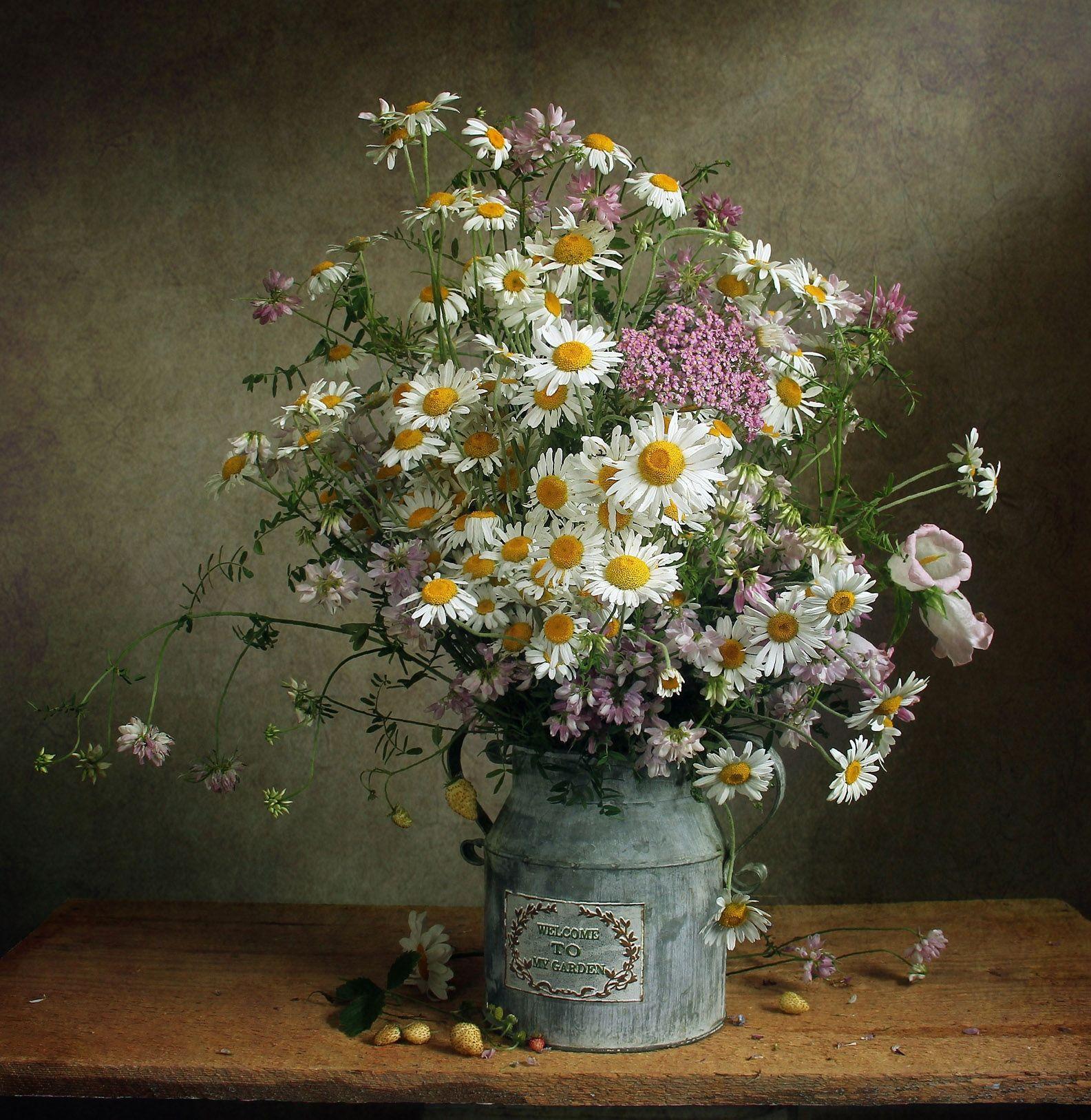 лето,  цветы, натюрморт, марина филатова, ромашки, Филатова Марина