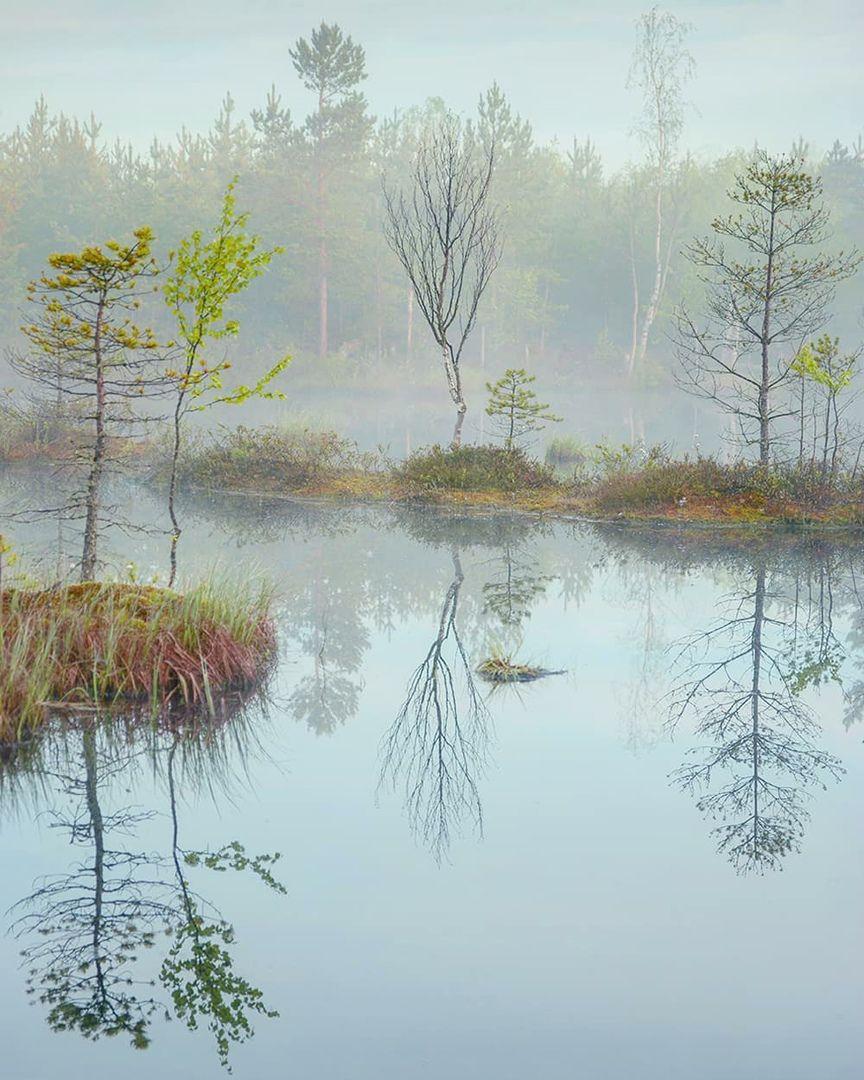 утро, туман, остров, рассвет, Петр Косых