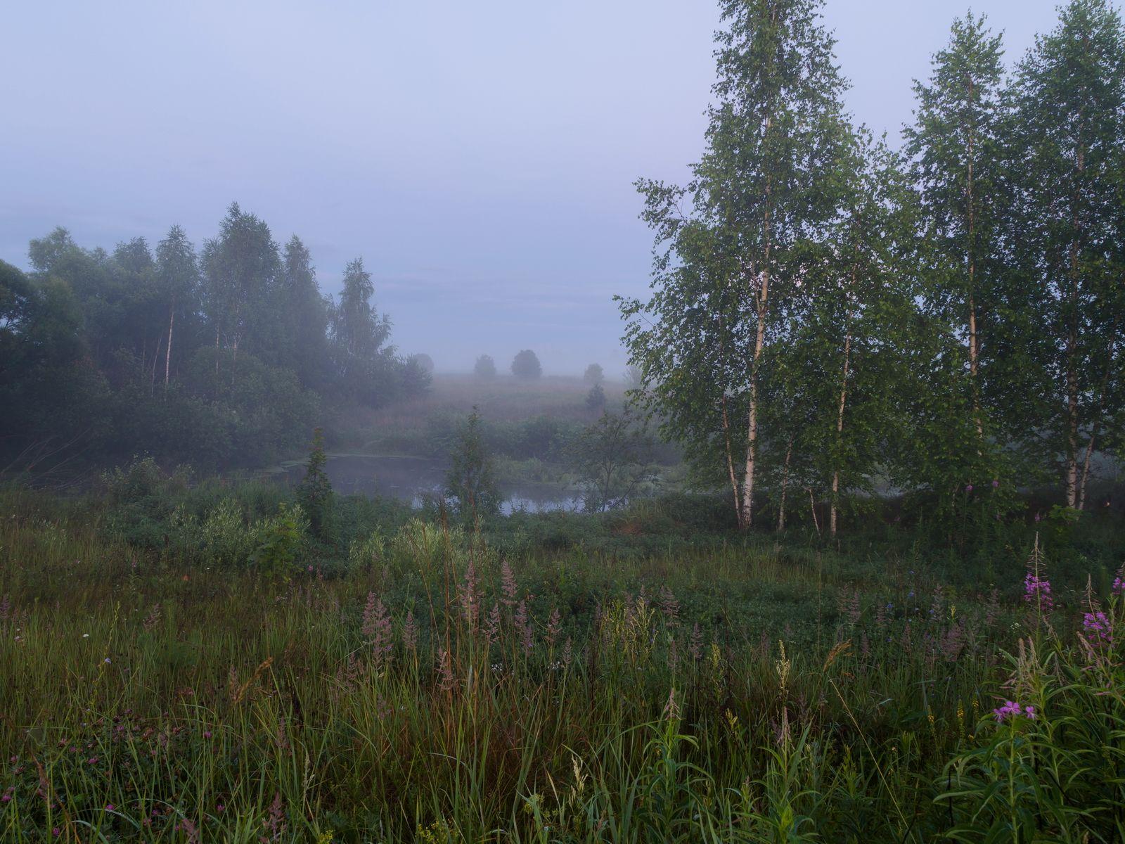 туман, ночь, река, пейзаж, природа, Морозов Юрий