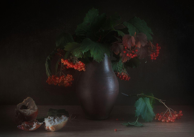 калина яблоко фрукт натюрморт, Сидорова Ольга