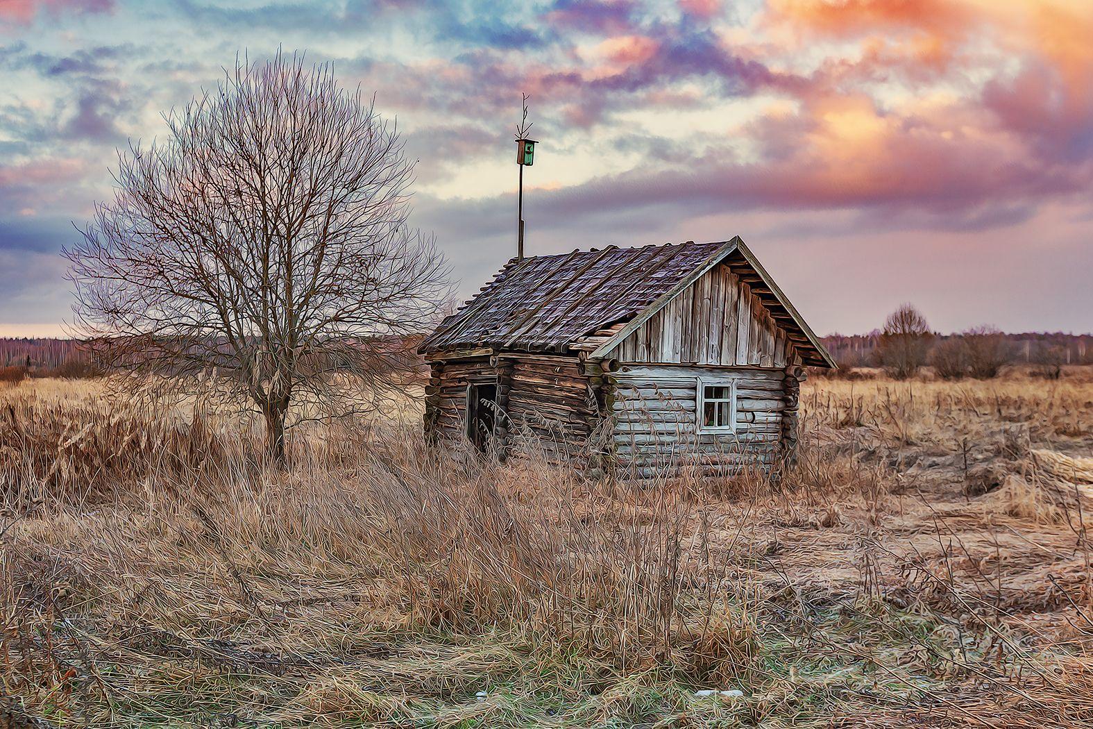 тверская область, весна, деревня, Липецких Владимир