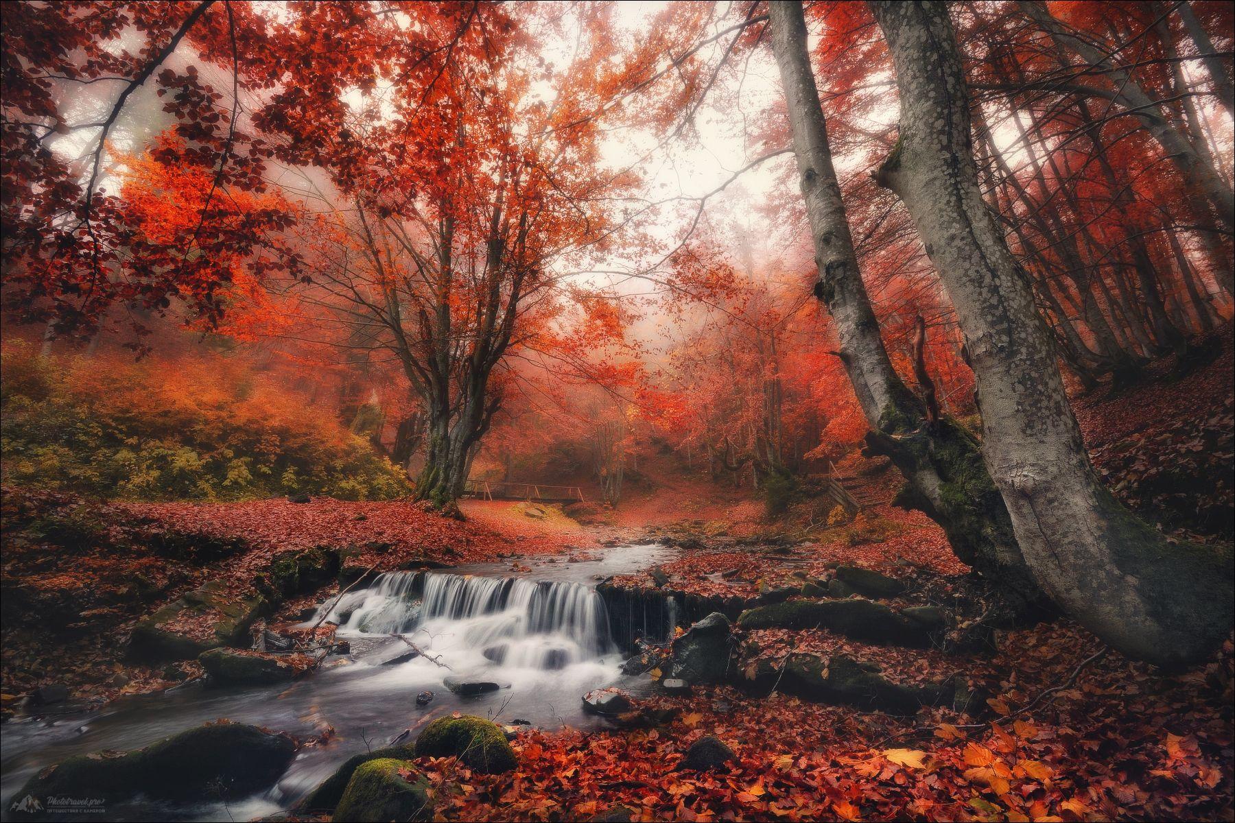 карпаты, закарпатье, водопад шипот, осень, Влад Соколовский