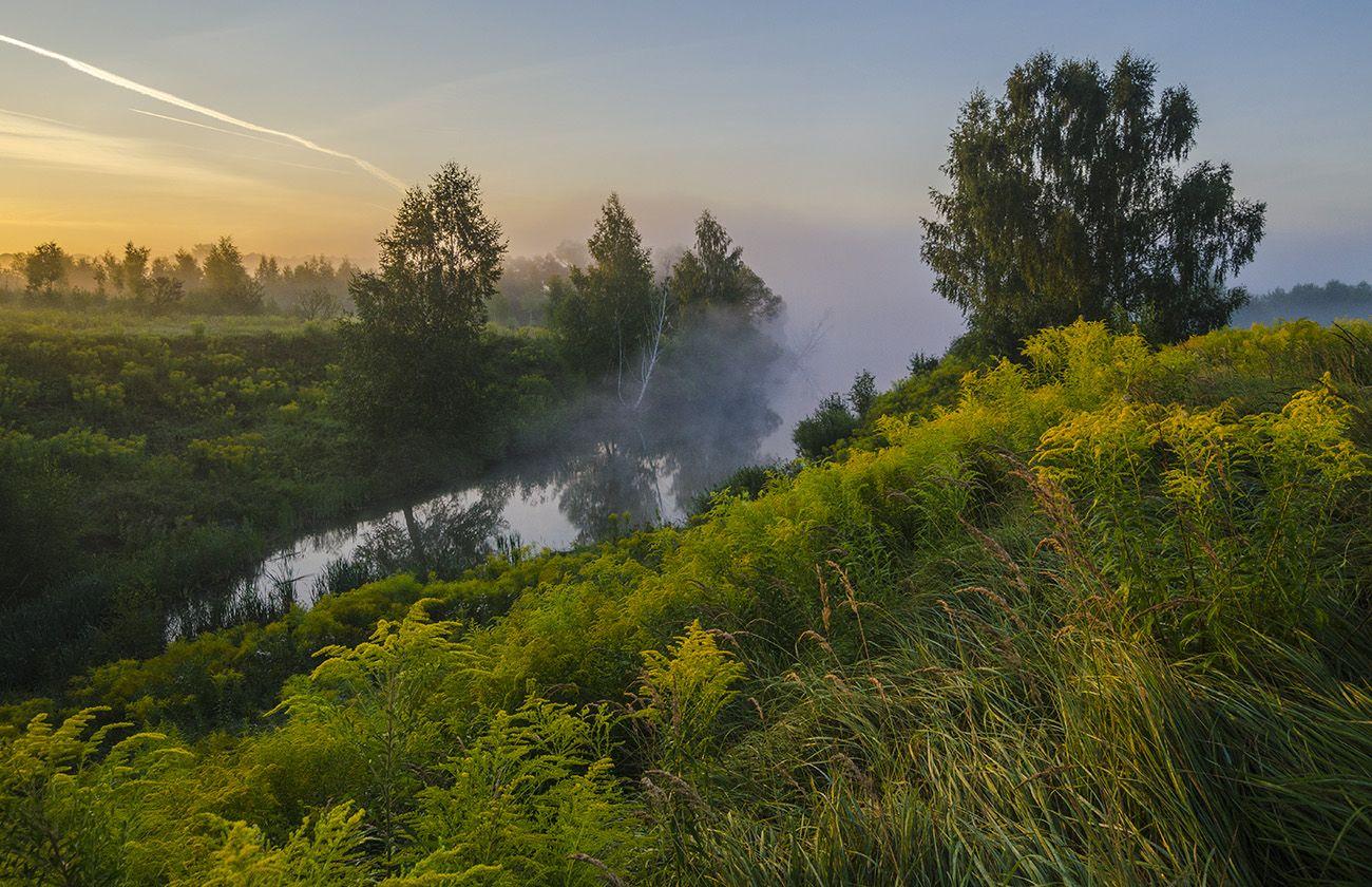 утро, лето, большие байдики, Михаил Агеев