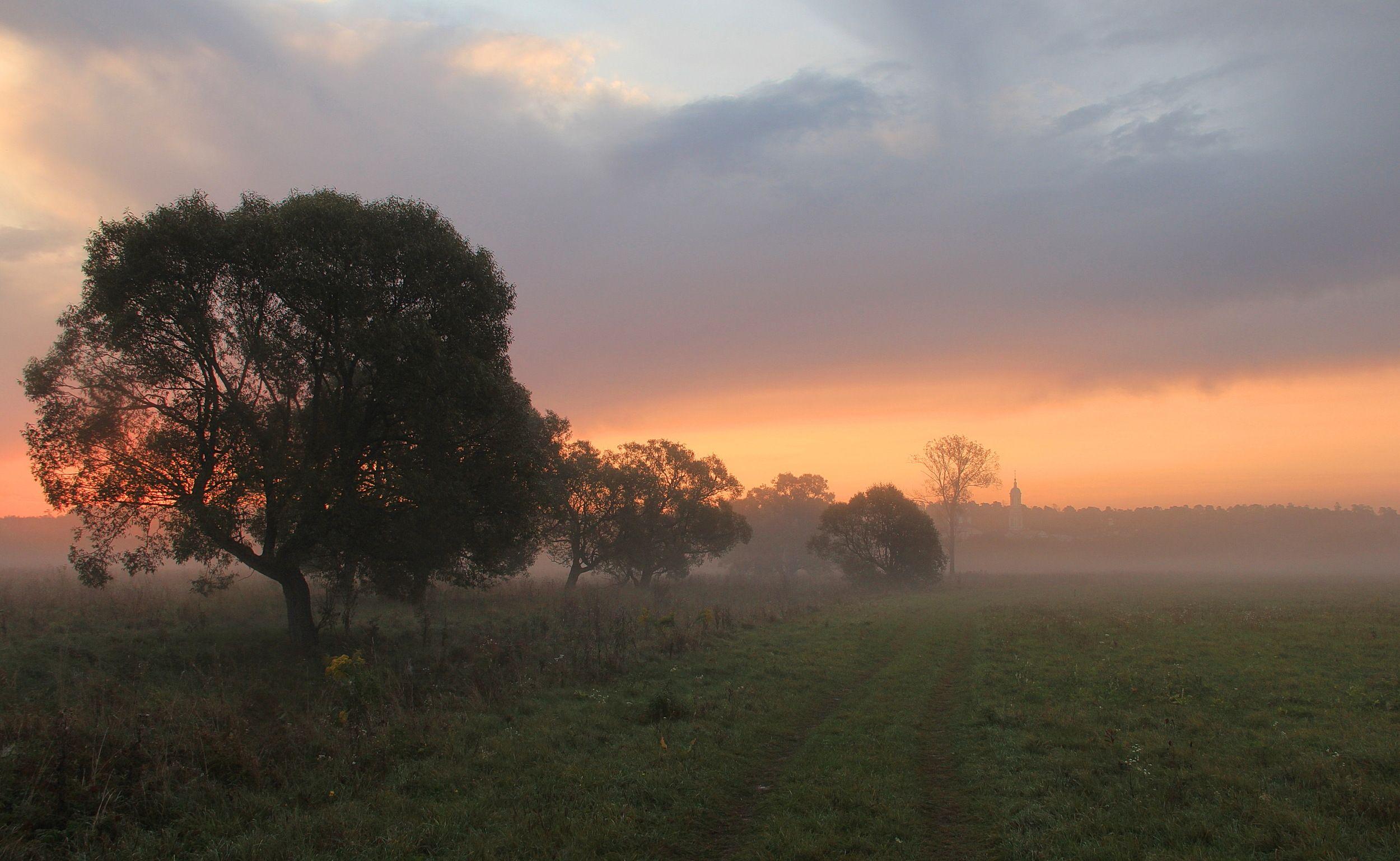 оптина, туман, осень, рассвет, природа, пейзаж, оптина пустынь, Суетинов Евгений