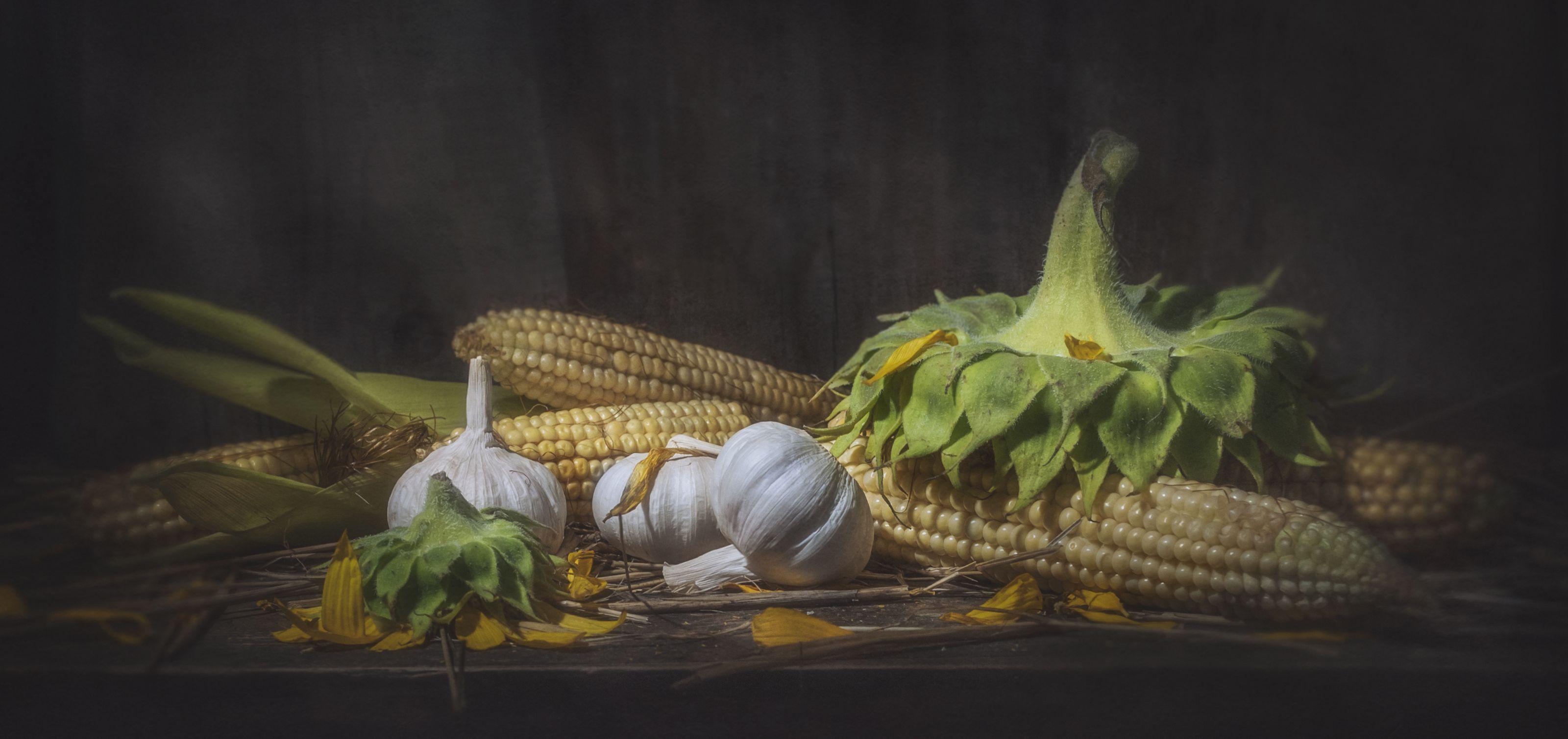 август,кукуруза,корзина,старый,деревенский,подсолнух,чеснок,жёлтый,початки, Володин Владимир