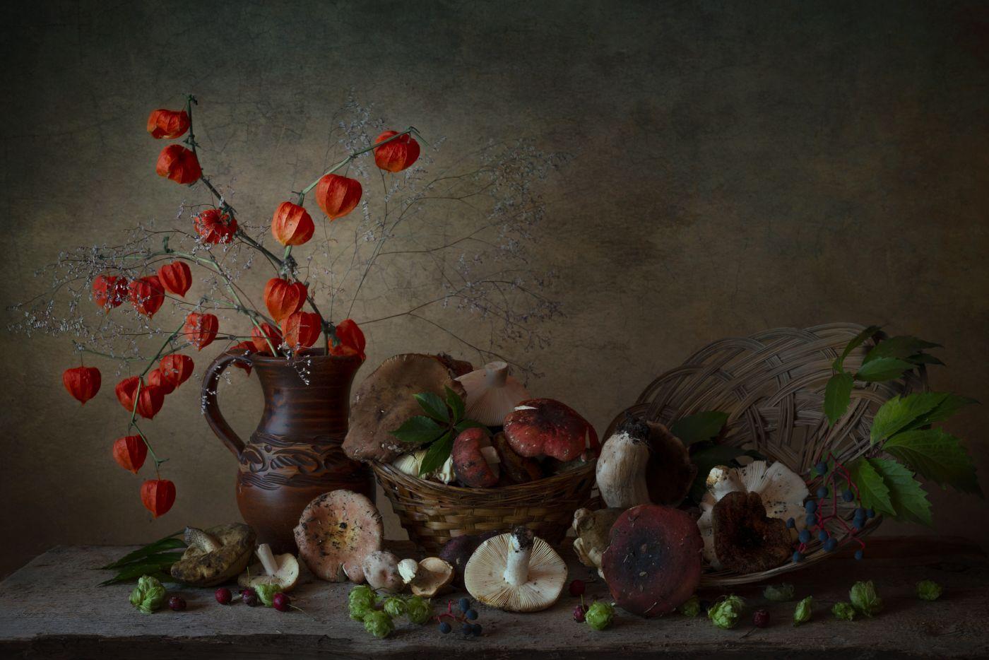 грибы,сыроежки,физалис,сентябрь,натюрморт, Елена Брежицкая