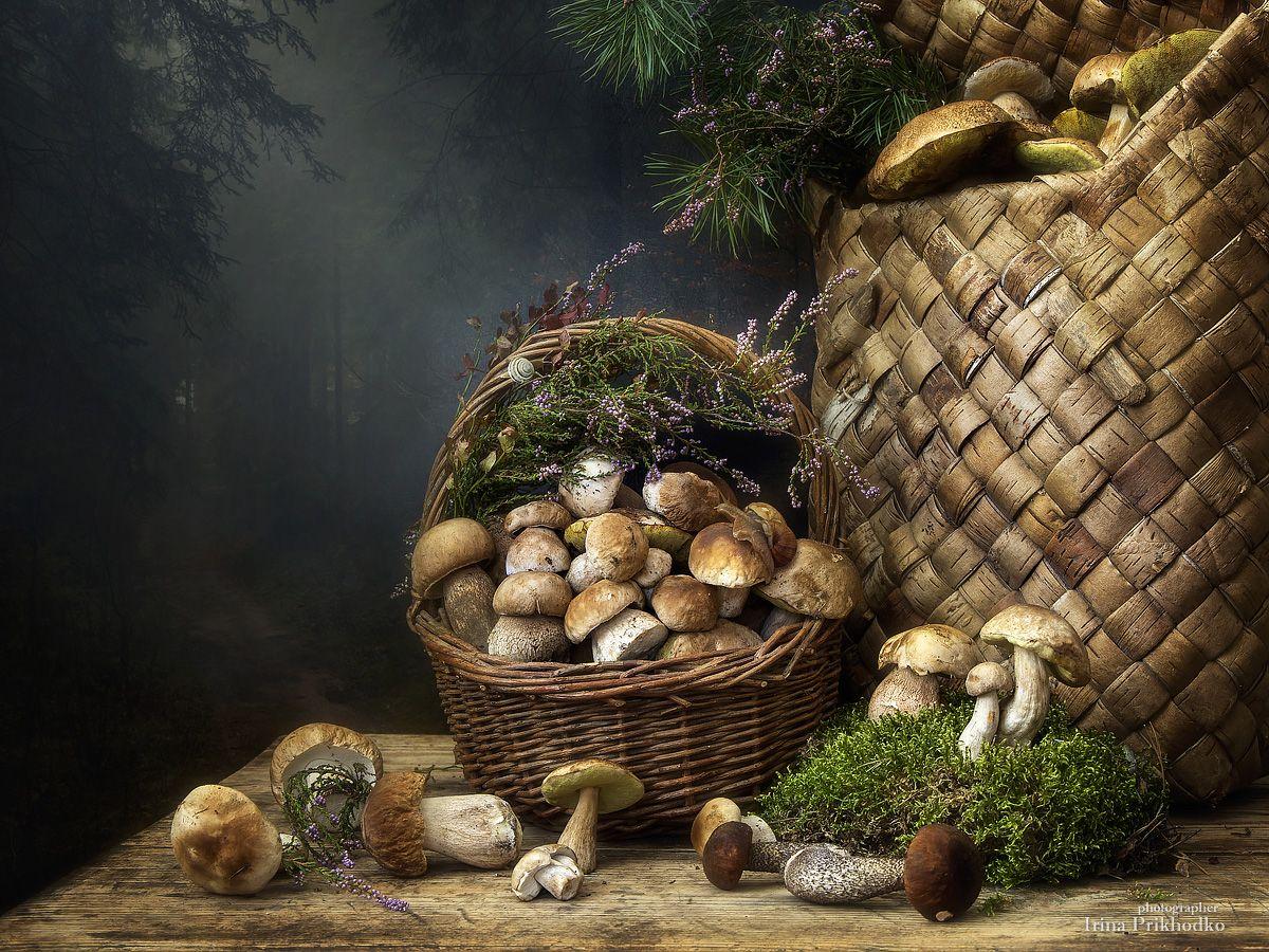 натюрморт, осень, грибы, лесные дары, корзины, фотокартина, Приходько Ирина