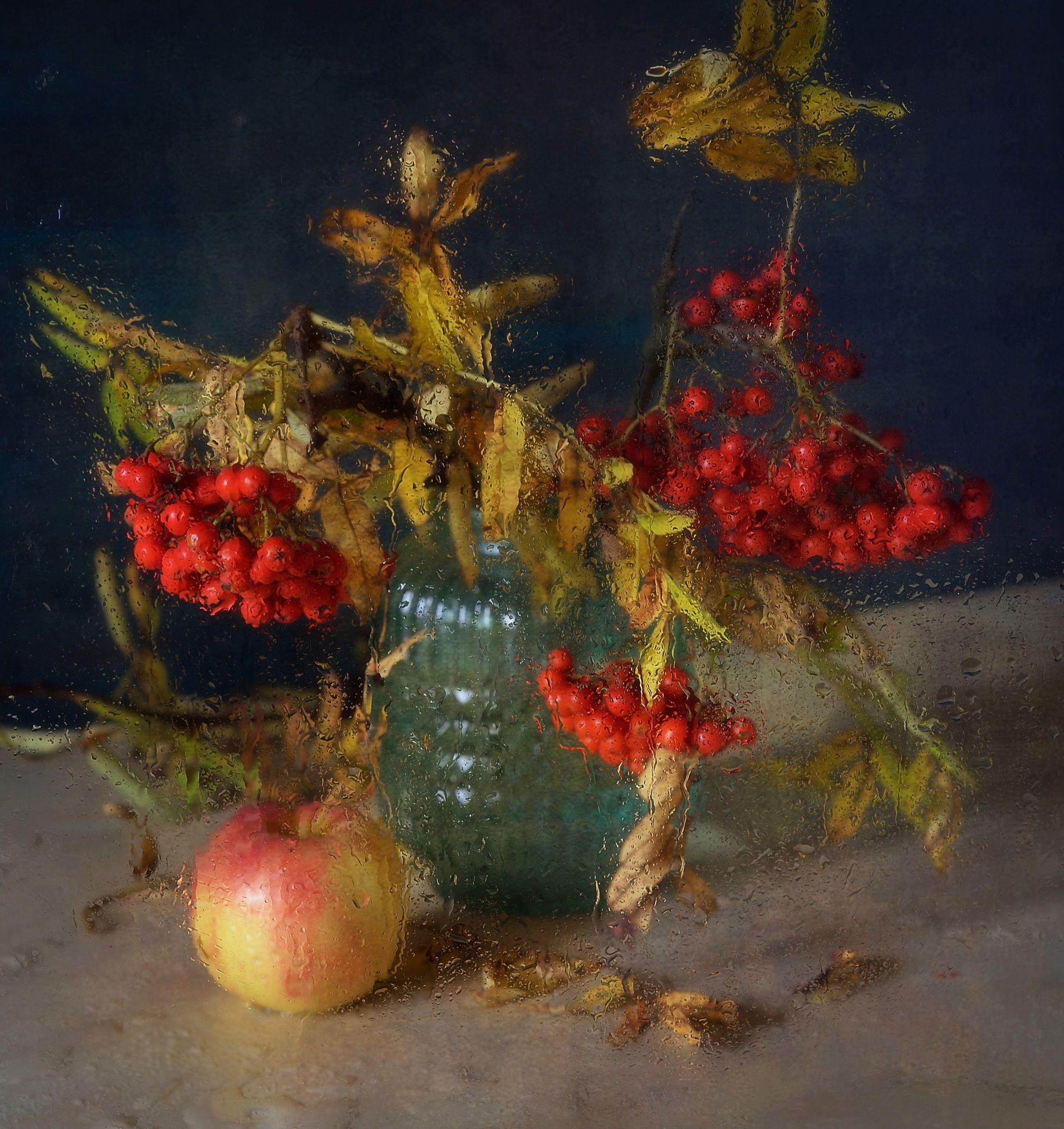 натюрморт,композиция,яблоко,рябина,капли, Наталия К