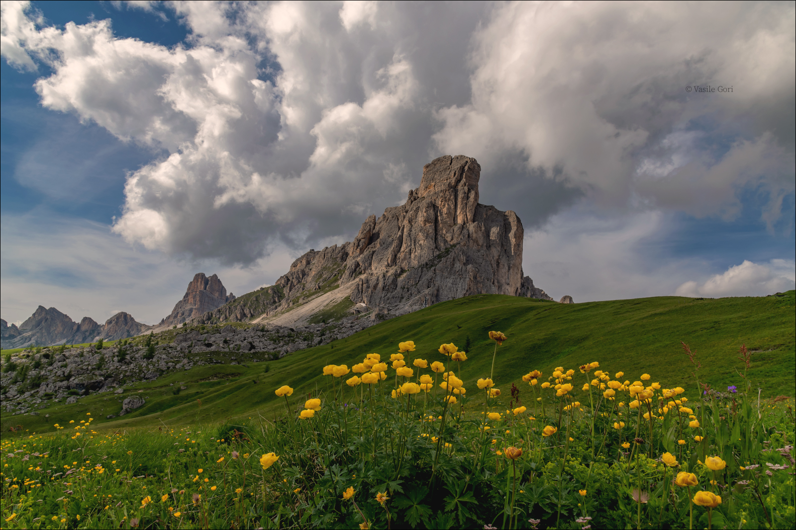 доломитовые альпы,passo giau,панорама,лето,италия,alps,пейзаж,dolomites,цветение, Гори Василий