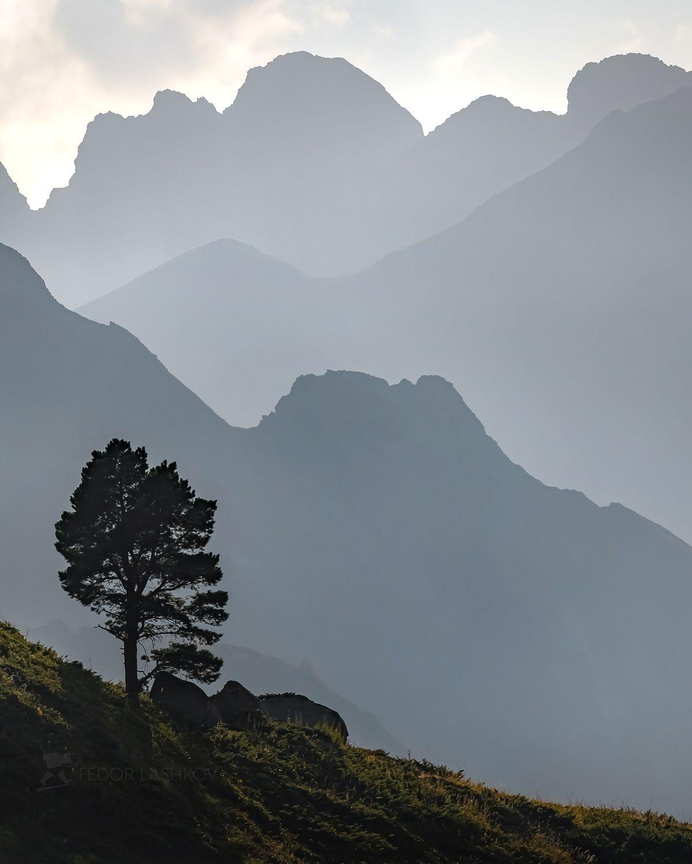 карачаево-черкесия, горы, гора, долина, кавказ, кавказские горы, туман, дымка, туманный, хребет, склон, вершина, акварель, дерево, сосна, лето, закат, воздушные, линии, графика, серый,, Лашков Фёдор