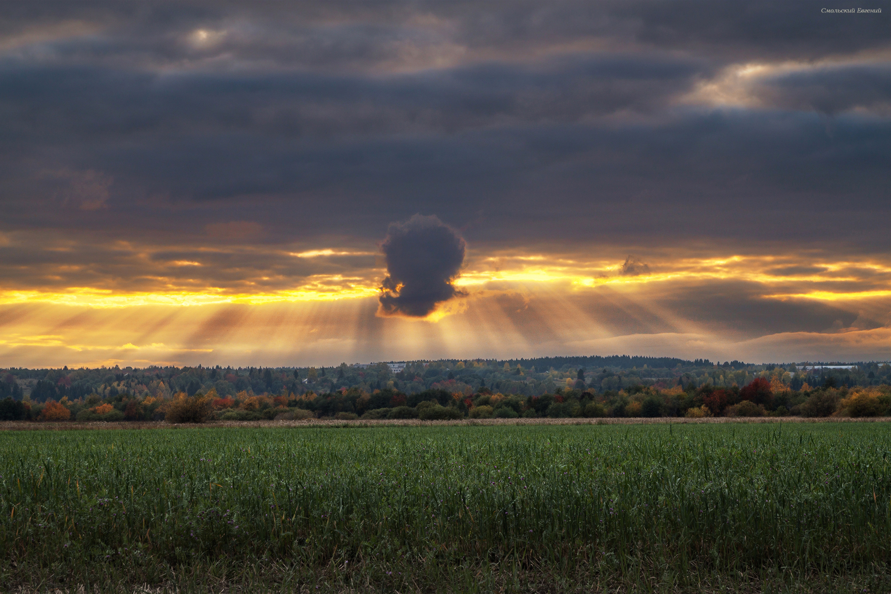 небо, закат, осень, поле., Смольский Евгений