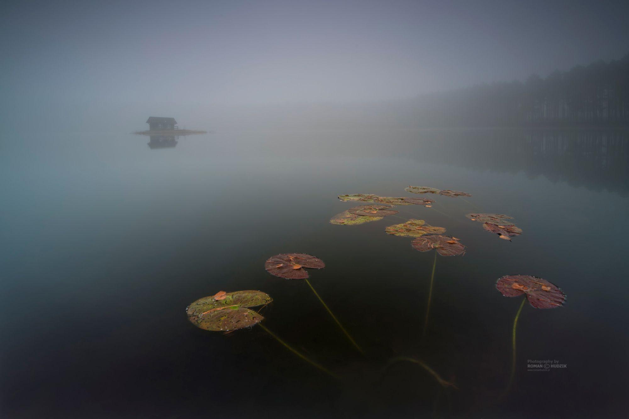 Foggy world, fog, sunrise, lake, landscape, forest, water, sky, manufactories,, Hudzik Roman