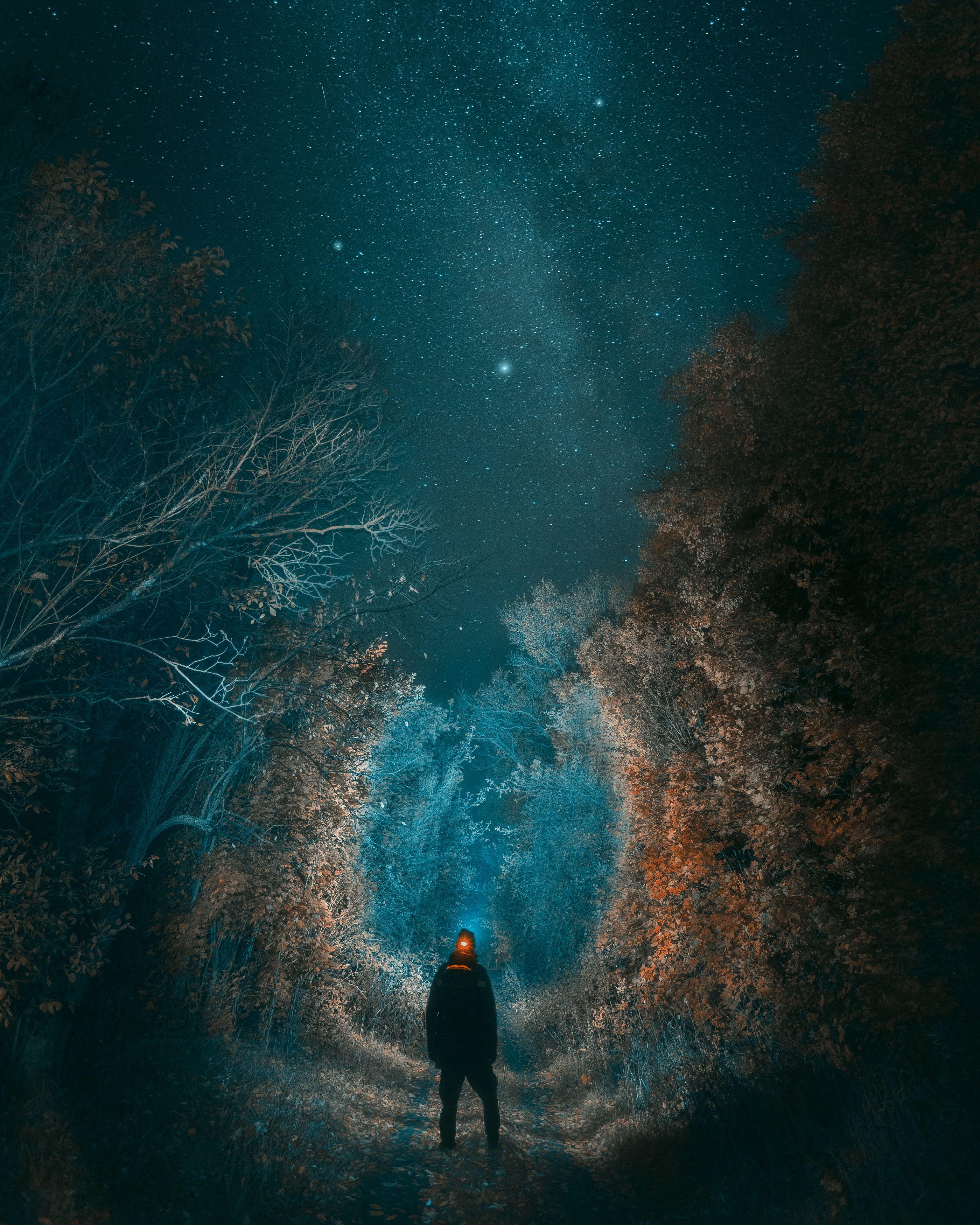 ночь, звезды, дорога, природа, Тульская область, пейзаж, Мартыненко Дмитрий