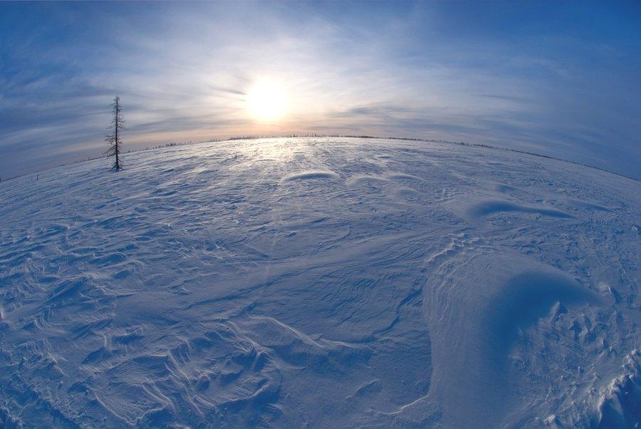 солнце, снег, Igor Nelinov