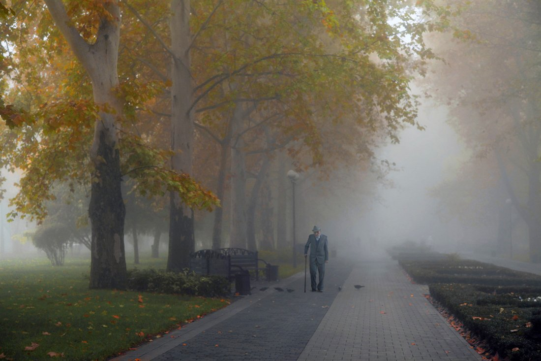 осень, туман, аллея, сквер, старик, Rita Gadar