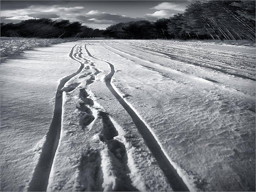прогулки в любую погоду, коляска, мама, снежный март, 2008, Лариса Лучко