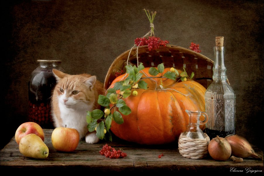 заготовки, компот, лук, натюркотики, осень, рыжая кошка, тыква, яблоки, Eleonora Grigorjeva