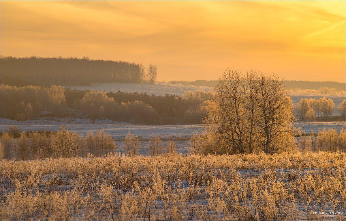 Зауралье, Зима., Курганская, Снег, Трава, Утро, Шадринский, Кутыгин Эдуард