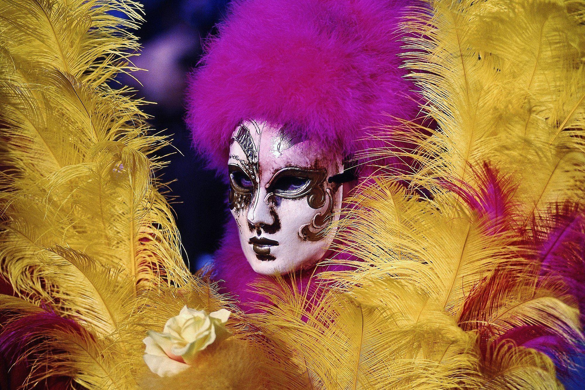 maschera,piume,ritratto,giallo,viola, paologr63