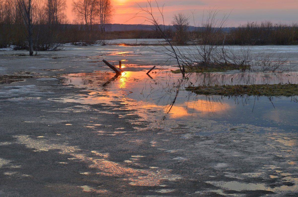 апрель, болото, закат, отражение, тёплый вечер, тишина, Irina Shapronova