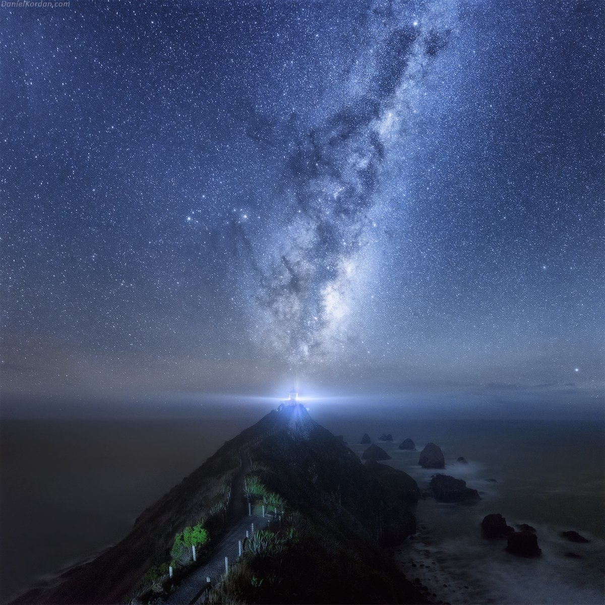 Новая Зеландия, Nugget, Даниил Коржонов