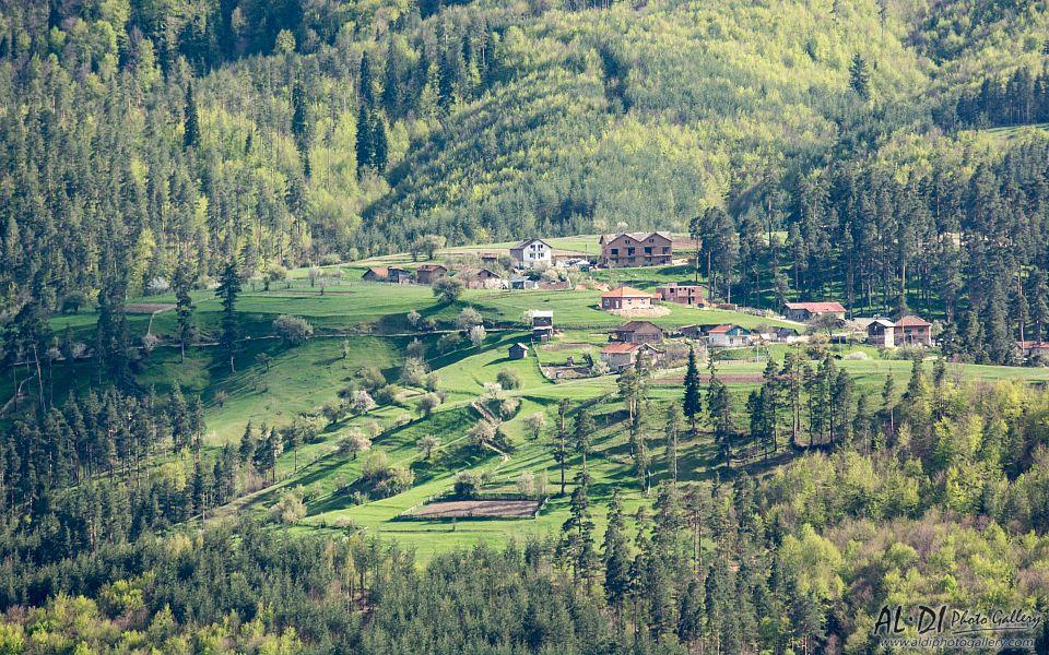 building, Bulgaria, field, forest, meadow, mountain, Rhodope, spring, tree, Александър Димитров
